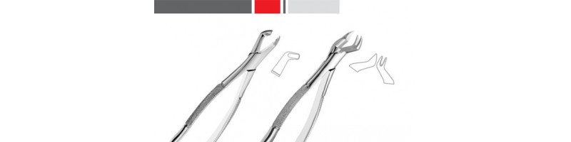 American Pattern Tooth Extraction Forceps